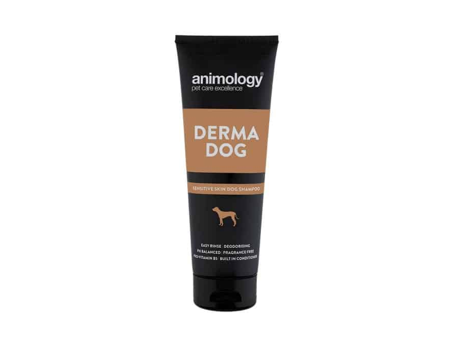 ANIMOLOGY ŠAMPON DERMA DOG 250ML